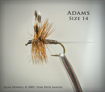 The classic Adams...perhaps the most well known of all fly patterns.