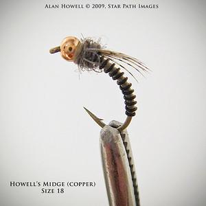 Howell's Midge