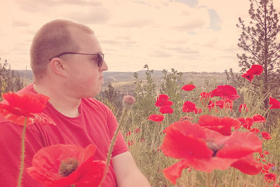 Stop and Smell the Poppies....