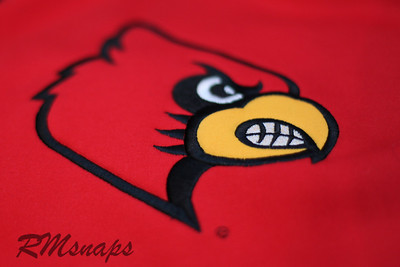 Project365-002  Go Cards!