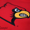 Project365-002<br /> <br /> Go Cards!
