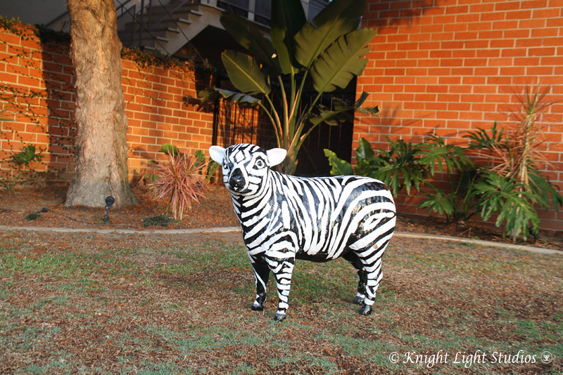 Day should be 72, but really not anymore - the ever elusive Zebra Sheep.  Mascot of the fire station on 3rd street in Long beach.  He is painted to match seasons, holidays, or whatever a bored fireman feels like painting.