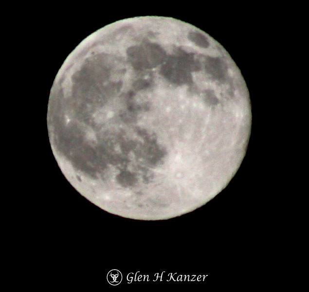 Day 49 - Moon Dancer - always wondered what it looked like this close.  300mm lens on a tripod.