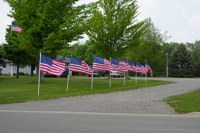 Week 21 - You can't miss it.  We have a flag in the front yard.  In fact there are 29 flags in the front yard.