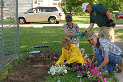 Week 22 - Many members of the local Lions Club planted flowers in a neighborhood park this week in a community wide project to beautify the village.