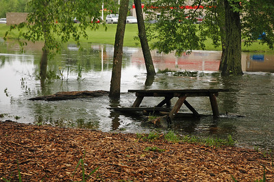Week 22 - We've had rain almost every day this month.  Just a week ago all of these trees and the picnic table were high and dry.