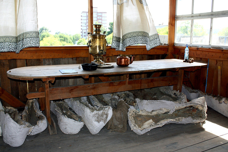 Cottage used by Russian paleontologists in Blagoveshchensk. (8.2.2011)<br /> <br /> There's just something I like about this despite it's faults - the wind blowing the curtains, the traditional samovar on the table, & those large casts of dinosaur bones on the floor. Paleontologists cast the bones in plaster while still in the earth so they won't break when removed. These casts are of the bones of the Amurosauras, first discovered in 1991 by paleontologists Yuri Bolotsky and Sergei Kurzanov. <br /> <br /> Thanks to all for the welcome back & the comments on yesterday's berry shot.