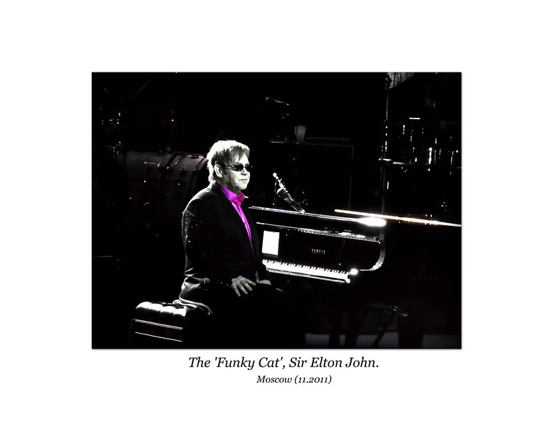 The original 'Funky Cat' himself, Sir Elton John. (11.20.2011)<br /> <br /> In my previous life I spent years in the music biz in L.A., so if a friend of mine rolls through town, there's a good chance I'll get to see the  show. In this case Kim Bullard, Elton's keyboard player, comp'd me the tickets. Thanks, Kim!