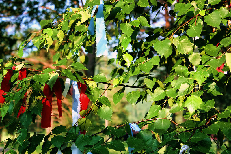 Ribbons of reverence. (7.13.2012)<br /> <br /> Common throughout Siberia and much of the Mongol world is the tying of ribbons in the branches of trees. A shamanistic tradition associated with healing & luck, it's believed the spirits heed the wishes & intentions of those who've tied the ribbons.<br /> <br /> I'm still a bit under the weather since our return & apologize if I've missed commenting on some of your shots.<br /> <br /> Rustem will be off to another region of Siberia next week; thankfully, I'm staying put. Siberia is so vast that if were an independent country, territorially it would be the largest country in the world. Siberia spans 7 time zones.