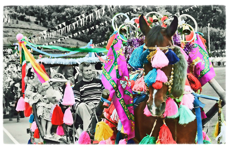 Not the surrey with the fringe on top; the horse with the tassels on top. (6.14.2012)<br /> <br /> Another shot from the Sabantuy. Horses play an important role in Tatar culture & it's traditional to adorn them. Of course, it's also traditional to eat them. Rustem returned home with a freshly made sausage he was presented with. We suspect it may be horse meat. No labels, so no idea what's in it...