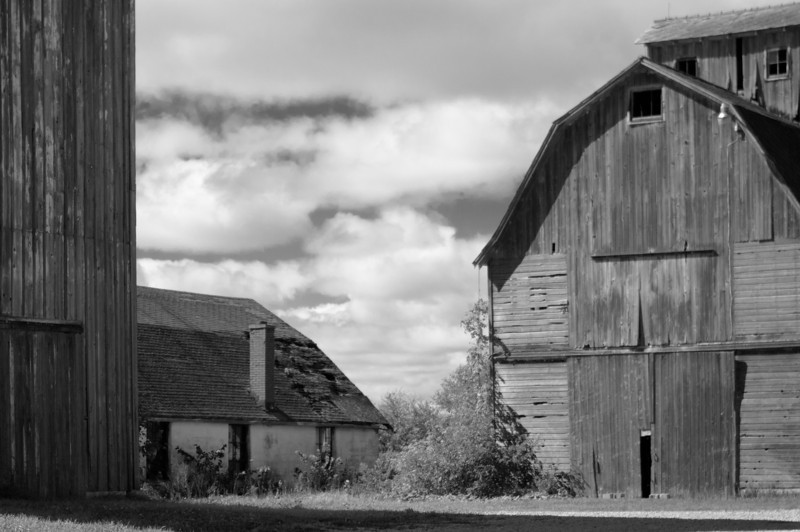 Converting this to B&W didn't really suck much color out of the original picture.  The barns are all pretty much faded grey anyway, but dropping out the blue and green in the sky and grass seemed to be the right thing for this picture.  55mm, 1/1000s, f5.6 (really should have increased the f stop on this to increase the sharpness but I shot this out the window of a moving car so I needed a high shutter speed)