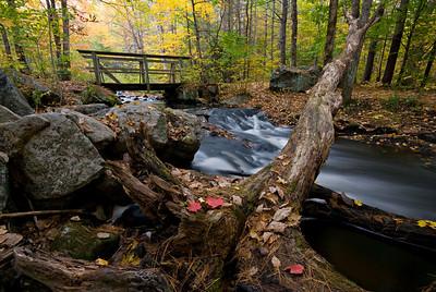 Log Bridge Autumn, taken October 11, 2008.