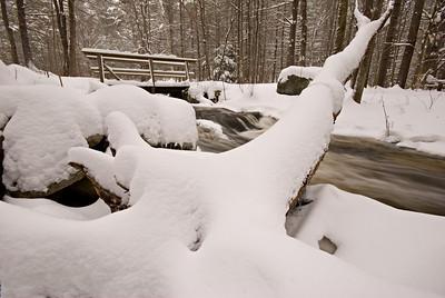 Log Bridge Winter, taken December 21, 2008.
