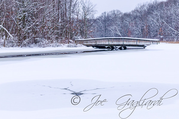 Jan 24, 2015 - Calm day after snowing over night at Muriel Hepner Park on Diamond Spring Road.