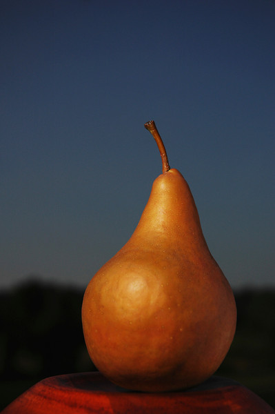 Fruit_8