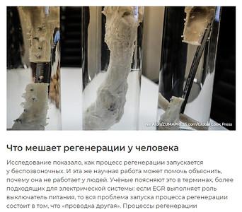 15-Mar-2019 News, Russia