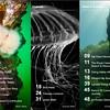 PNW Diver - Page 4