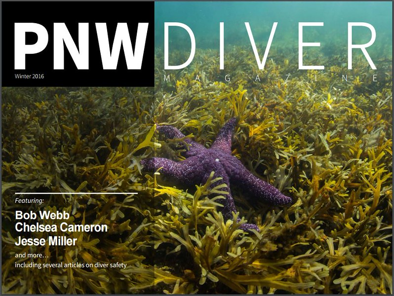 PNW Diver - Cover Photo Not Mine