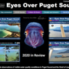 Eyes Over Puget Sound - Department of Ecology