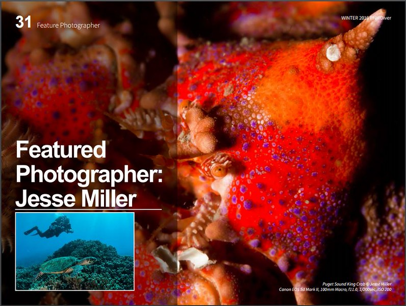 PNW Diver - Page 31 - Small Photo by Michael Penders