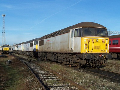 56038 heads a line of stored Class 56s at Crewe DMD during December 2008. Published in Railways Illustrated February 2009.