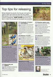 BASC magazine July/aug 2013  Inset point 1 - electric fence and main point 5 - poults