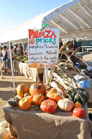 Pumpkinpalooza2