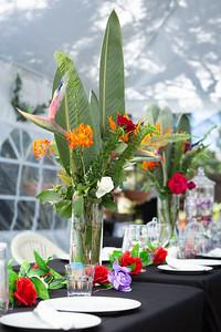 Gav&Suz Wedding-101020-6278