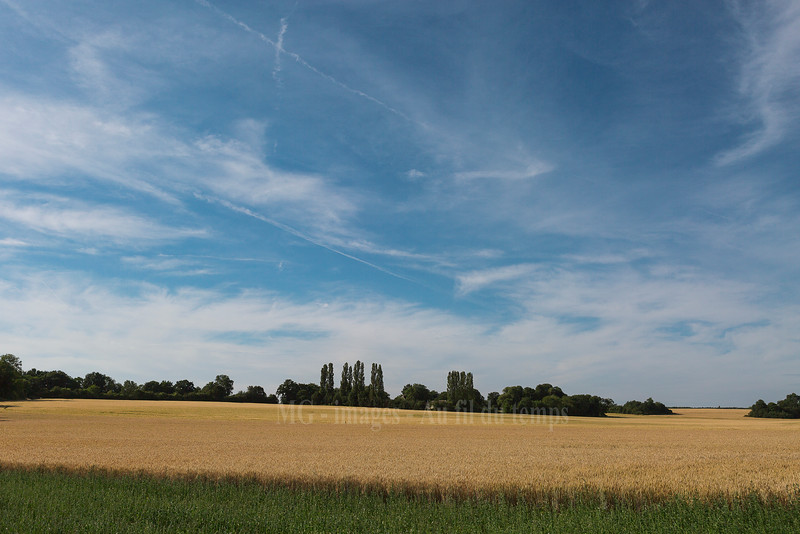 Essonne f/9, 1/1250, iso 200, 32 mm