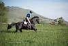 Dan gallop-68A4383