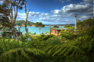 The view north from my western deck - February 2013 Raglan, New Zealand