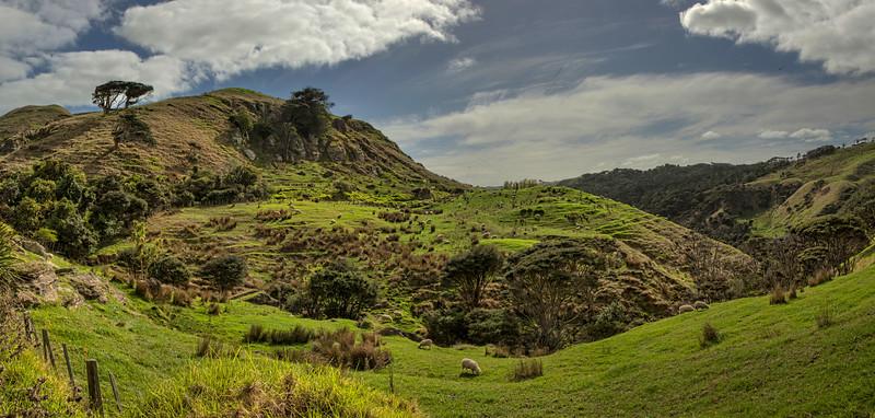 Between Raglan and Te Akau3