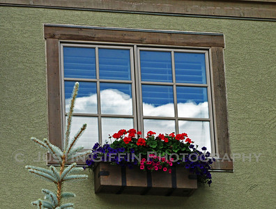 Window reflection with flowers. Vail, CO
