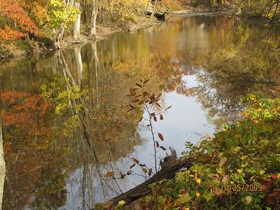 Cascade Park--Black River Diane M. Mohrman