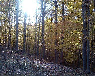 Metro Parks trail extension in Elyria. (Photo by Chronicle reader Elizabeth Mitchell.)