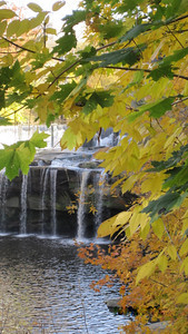 East Falls. (Photo by Chronicle reader Joyce Young.)