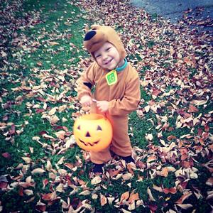 Hunter, 2, makes an adorable Scooby Doo.