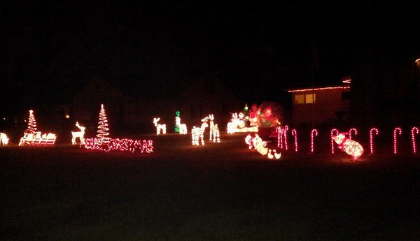 Glowing reindeer adorn this yard on Washington Avenue. READER PHOTO