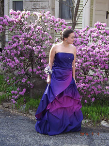 Sisi Snodgrass poses in front of flowers that match her dress before Elyria Catholic's prom on May 3.