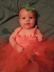 Mckenna, 9 weeks old, is a pumpkin princess.