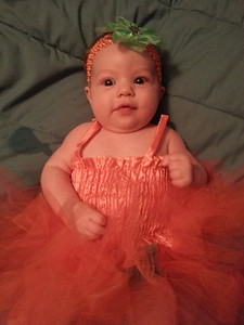 Mckenna, 9 weeks old, is a pumpkin princess.