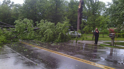 A tree fell over onto a car and power lines on Lakeview Road in Sheffield Lake.