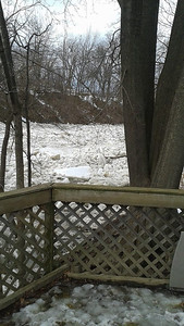 Shari Cummins sent this view of the river from their backyard on Blaine Street in Elyria Feb. 21.