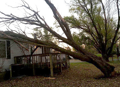 Sandra Lynn Breeden shared this photo of a tree that fell on her house on Pheasant Run in LaGrange.