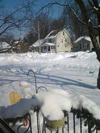 Elizabeth Kakos shared this photo from her backyard on Boston Avenue.