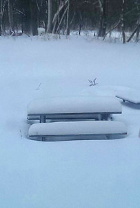 Telesha Childers' backyard on West River Road is buried under snow.