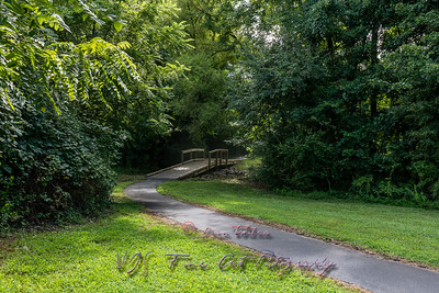 Wooden Bridge on Nature Trail