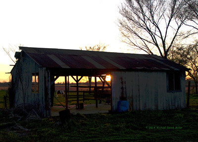 Horse and Barn at Sunset