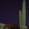 Shooting Star Pleiades Saguaro Cholla