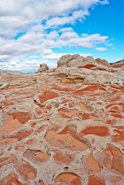 White pocket, AZ - November 2011